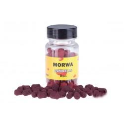 MC Karp Dumbells 8 mm Morwa