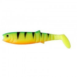 Fire Tiger rozmiar 6,8-15 cm